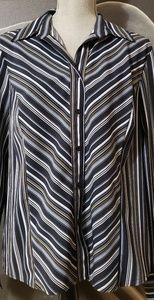 Blue striped button down blouse
